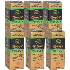 6 Adet Eğriçayır Organik Sıvı Propolis 20 ML (ALKOL BAZLI)