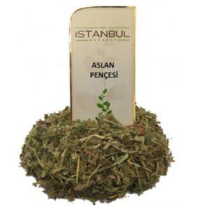 6 Adet İstanbul Baharat Aslan Pençesi (Testere Dişli) 40gr