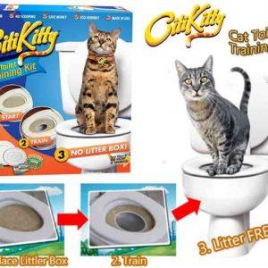 Citi Kitty Kedi Tuvalet Eğitim Seti Western Union Ödeme