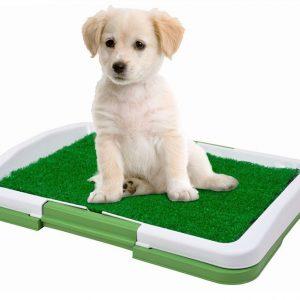 Köpek Tuvalet Eğitim Seti: Potty Trainer Avrupa Satış