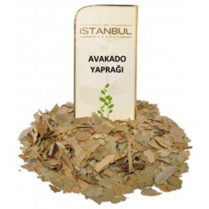İstanbul Baharat Avakado Yaprağı Bitkisi